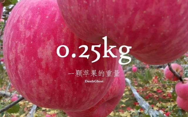 一颗苹果重0.25kg